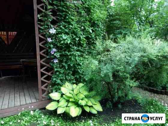 Садовник Одинцово