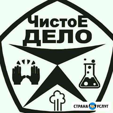 Химчистка мебели и салонов авто Омск
