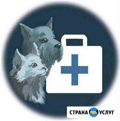 Ветеринарный кабинет Ачинск