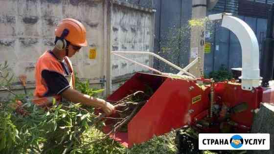 Аренда дробилки в Видном. Удаление деревьев Видное