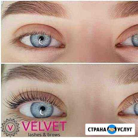 Velvet ресниц 750 Омск