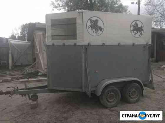 Перевозки крс,Лошадей и тд Волоколамск