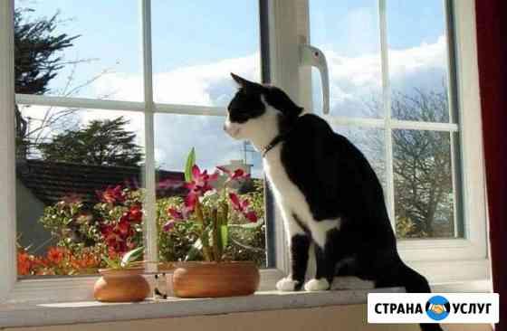 Мойка окон Екатеринбург