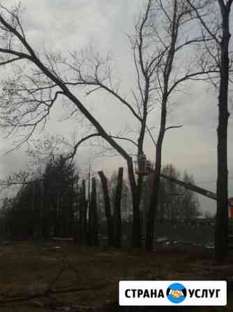 Спил деревьев любой сложности, санитарная обрезка Кострома