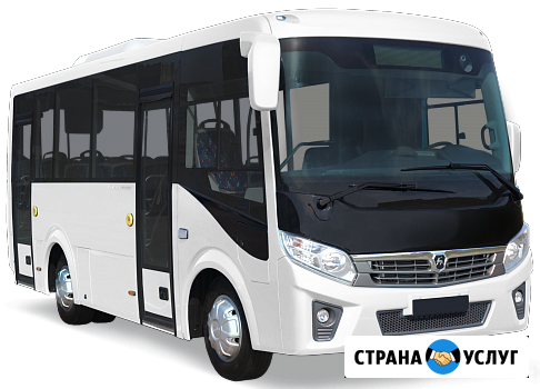 Пассажирские перевозки автобусом ВЕКТОР NEXT 7.1 Омск