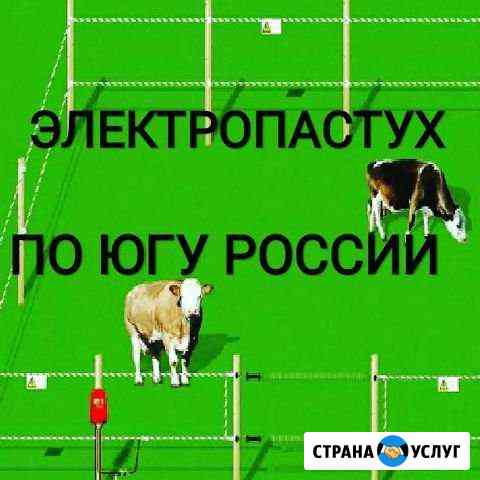Электро-забор для Крс и баранов электропастух Астрахань