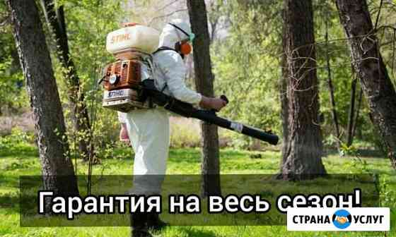 Акарицидная обработка от комаров, клещей, мух Одинцово