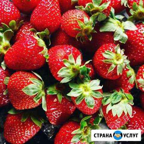 Байкальская Клубника Иркутск