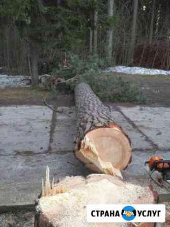 Удаление деревьев Одинцово