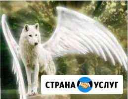 Эвтаназия животных Иркутск