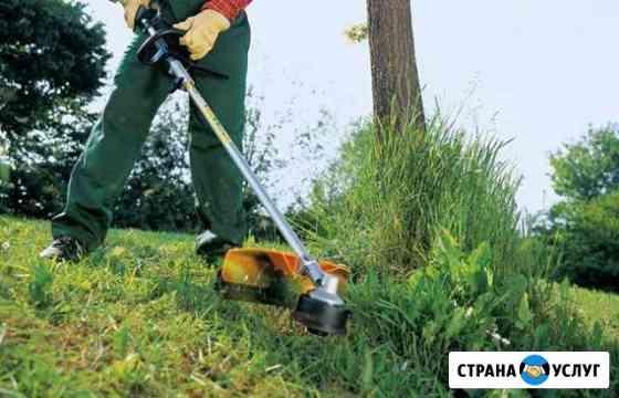 Покос травы Астрахань