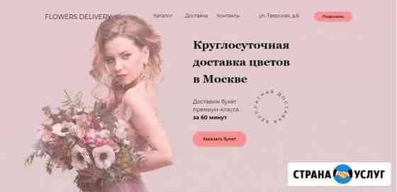 Создание сайтов на Тильде (веб-дизайн) Омск
