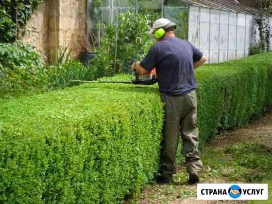 Стрижка растений/Опрыскивание деревьев/Продувка си Астрахань