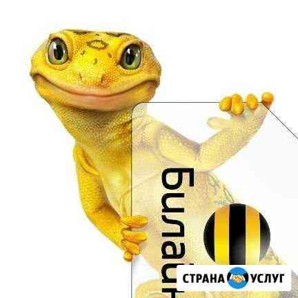 Интернет и тв Омск