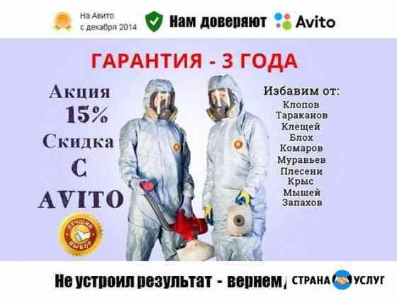 Уничтожение клопов, тараканов, клещей, грызунов Астрахань