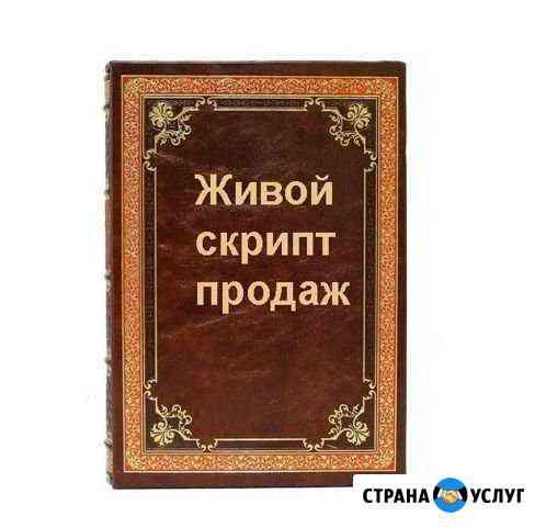 Скрипты продаж. Аудит и обучение отдела продаж Омск