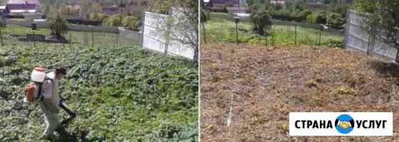 Уничтожения, удаления сорняков и борщевика Одинцово