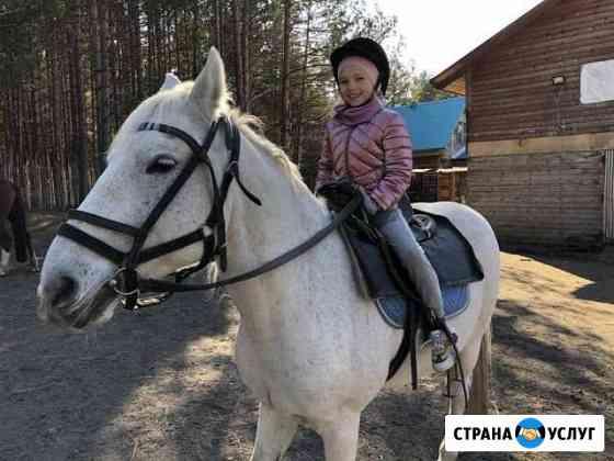 Прогулки на лошадях Иркутск