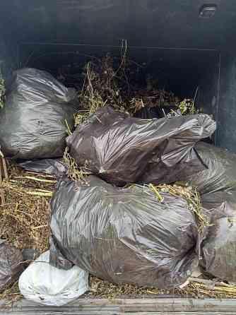 Вывоз мусора в Омске. Грузчики Омск